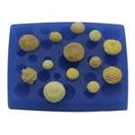 Assorted Centers Silicone Mold