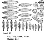 Assorted Leaves Individual Sheet  #2