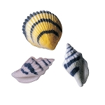 Seashells Assortment Dec-Ons® (6 pieces)